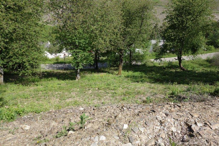 acheter terrain constructible 0 pièce 0 m² waldrach photo 7