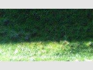 Terrain constructible à vendre à Forbach - Réf. 6739036