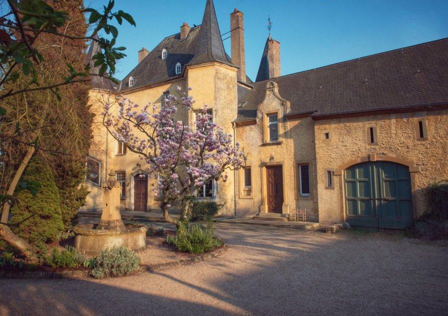 acheter château 6 chambres 0 m² wintrange photo 1