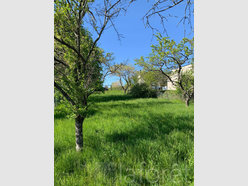 Terrain constructible à vendre à Halling-lès-Boulay - Réf. 7234668