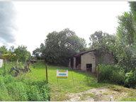 Terrain constructible à vendre à Schwerdorff - Réf. 6620524