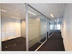 Bureau à louer à Luxembourg-Centre ville - Réf. 5543276
