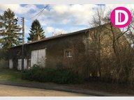 Maison à vendre F8 à Gondrecourt-Aix - Réf. 6653804