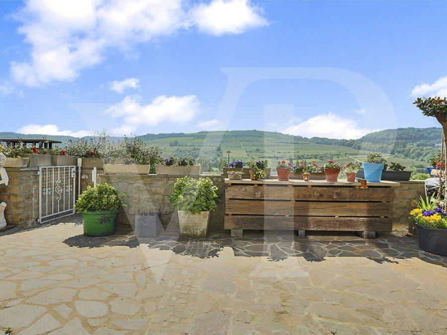 acheter maison 5 chambres 221 m² grevenmacher photo 4