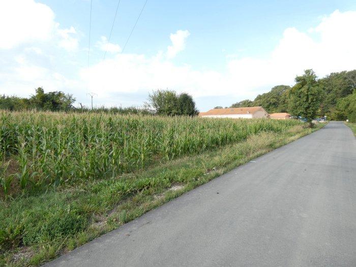 Terrain constructible à vendre à Grindorff-Bizing