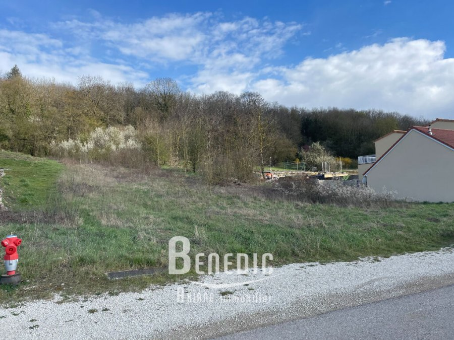 acheter terrain constructible 0 pièce 1010 m² lay-saint-remy photo 3