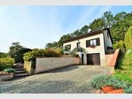 Maison à vendre F5 à Saint-Hubert - Réf. 6554252