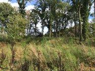 Terrain constructible à vendre à Creutzwald - Réf. 6993804