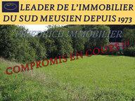 Terrain constructible à vendre à Saint-Maurice-sous-les-Côtes - Réf. 5164172