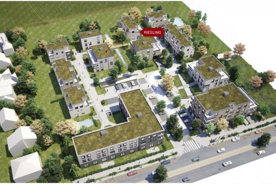 acheter penthouse 2 chambres 73 m² mertert photo 4