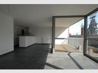 Wohnung zur Miete 3 Zimmer in Belval - Ref. 6931100