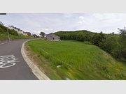 Maison jumelée à vendre 5 Chambres à Selscheid - Réf. 6129052
