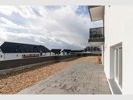 Appartement à louer 2 Chambres à Weiswampach - Réf. 6260380
