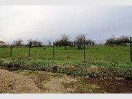 Terrain constructible à vendre à Mailly-sur-Seille - Réf. 7157916
