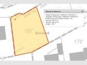 Bauland zum Kauf in Daleiden - Ref. 6788524