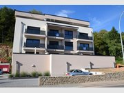 Appartement à louer 1 Chambre à Diekirch - Réf. 6896812