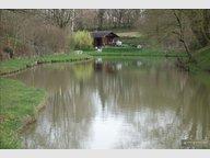 Terrain à Parné-sur-Roc , Mayenne - Réf. 5135532