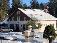Maison à vendre F10 à Xonrupt-Longemer - Réf. 6603708