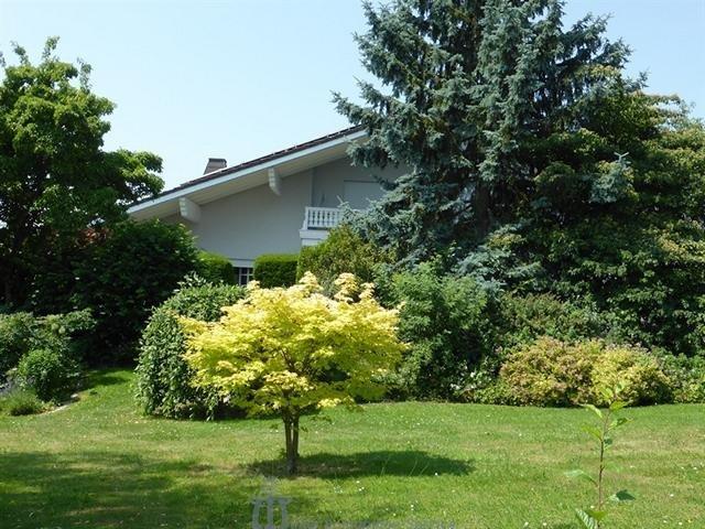 einfamilienhaus kaufen 10 zimmer 390 m² homburg foto 7