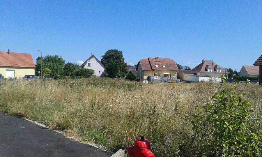 acheter terrain constructible 0 pièce 0 m² oberhergheim photo 1