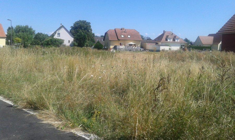 acheter terrain constructible 0 pièce 0 m² oberhergheim photo 2