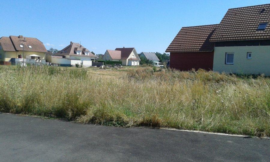 acheter terrain constructible 0 pièce 0 m² oberhergheim photo 3