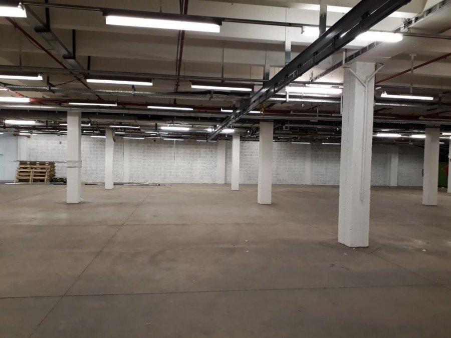 lagerfläche mieten 0 zimmer 15000 m² trier foto 1