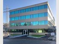 Bureau à louer à Windhof - Réf. 6489036