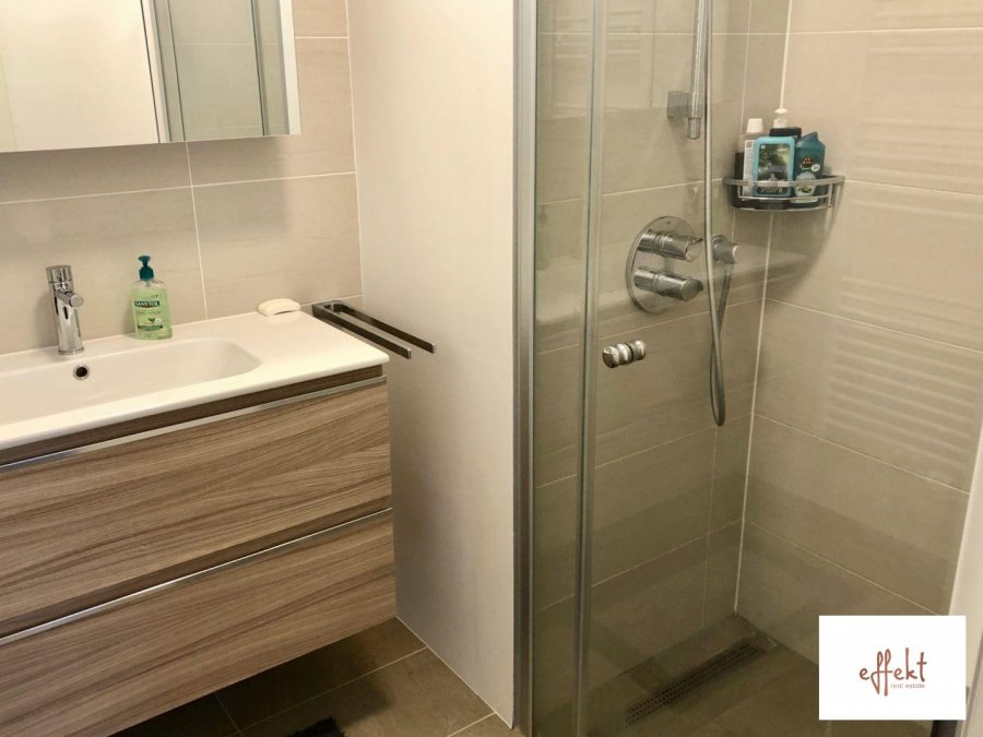 louer appartement 1 chambre 50 m² luxembourg photo 6