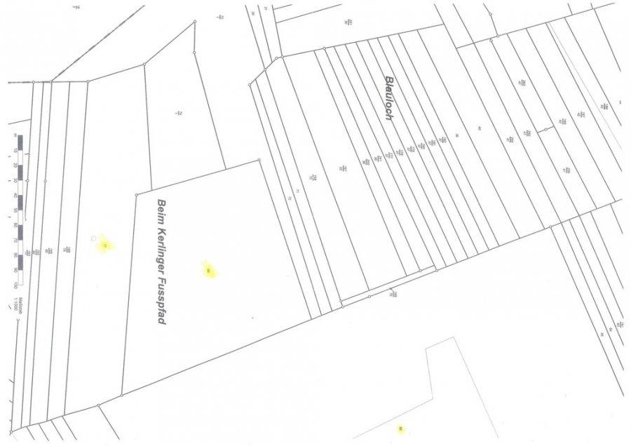 acheter terrains industriel 0 pièce 78767 m² wallerfangen photo 2