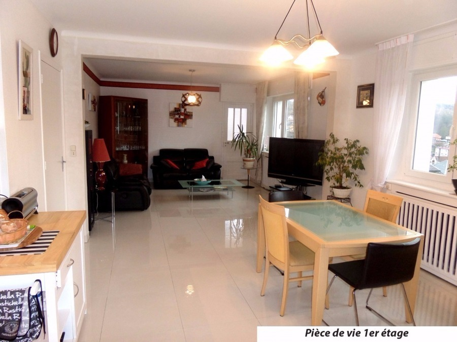 acheter maison 9 pièces 330 m² saulnes photo 1