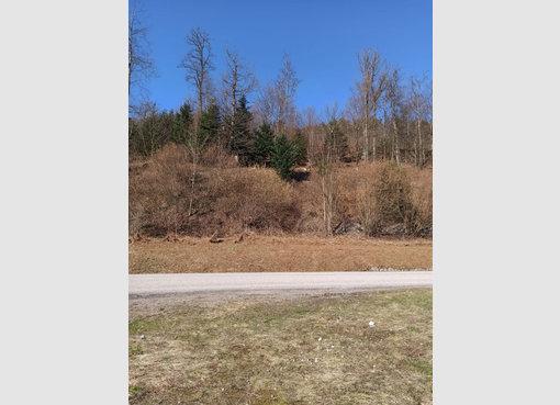 Terrain constructible à vendre à Xonrupt-Longemer (FR) - Réf. 7154140
