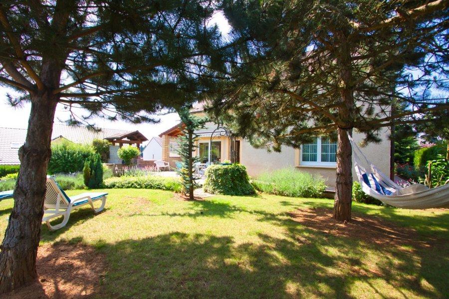 acheter maison individuelle 0 pièce 220 m² hettange-grande photo 3