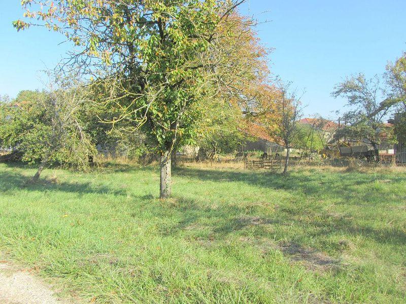 acheter terrain constructible 0 pièce 0 m² morelmaison photo 3