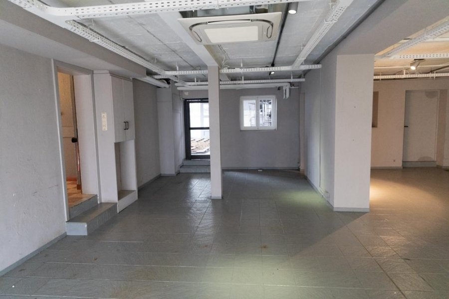 louer local commercial 0 chambre 341 m² junglinster photo 4
