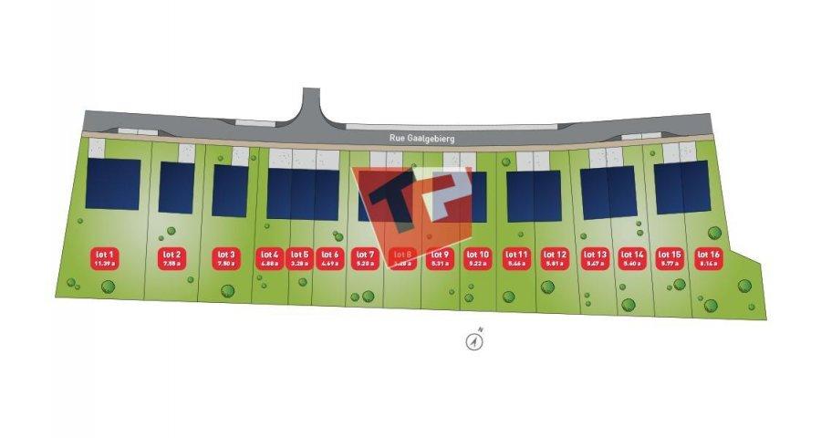 acheter terrain constructible 5 chambres 0 m² junglinster photo 3