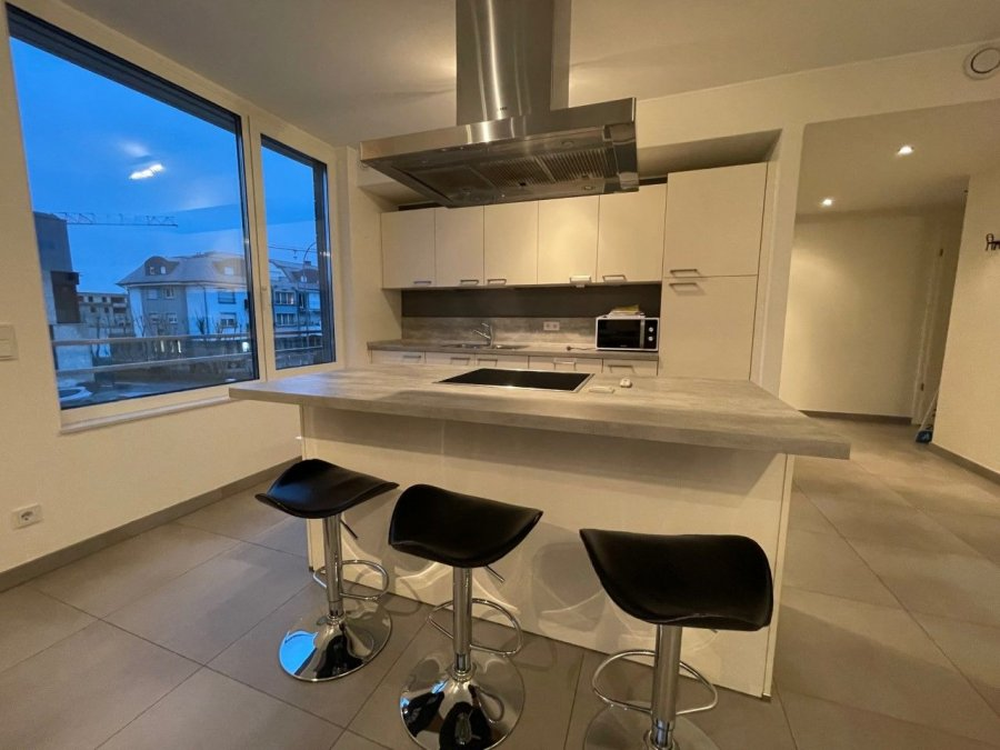 apartment for rent 1 bedroom 68.76 m² alzingen photo 4
