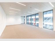 Büro zur Miete in Wemperhardt - Ref. 6770172