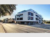 Appartement à vendre 3 Chambres à Weiswampach - Réf. 6054157