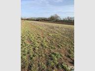 Terrain constructible à vendre à Saint-Avold - Réf. 7117069