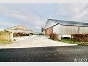 Entrepôt à vendre à Boxhorn - Réf. 6654989