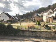 Terrain constructible à vendre à Beckingen - Réf. 6300701