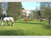 Haus zum Kauf 6 Zimmer in Nohfelden - Ref. 4940829