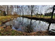 Terrain constructible à vendre F4 à Ville-Houdlémont - Réf. 7119901
