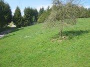 Terrain constructible à vendre à Seinsfeld - Réf. 6456109