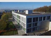 Entrepôt à louer à Windhof (Windhof) - Réf. 6210605
