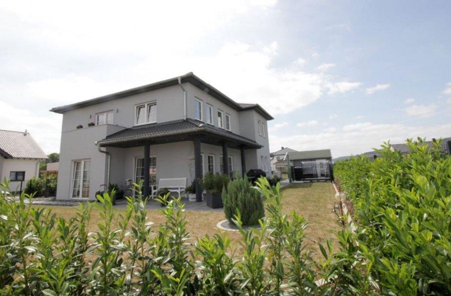 einfamilienhaus kaufen 7 zimmer 182 m² wolsfeld foto 4