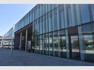Bureau à louer à Bertrange (Bourmicht) - Réf. 6486333
