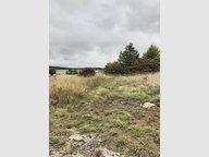 Terrain constructible à vendre à Beuveille - Réf. 6924621