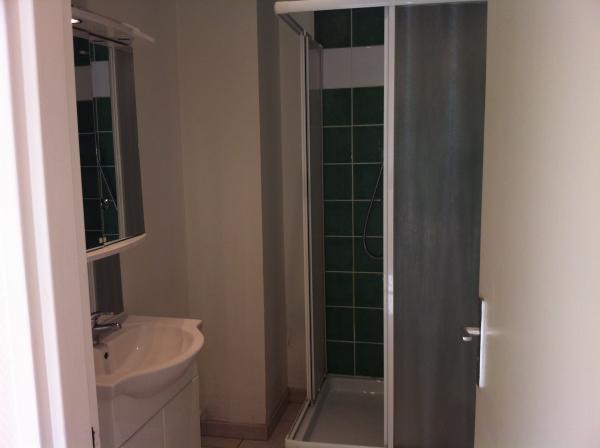 louer appartement 3 pièces 65 m² nancy photo 3